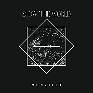 Slow the World