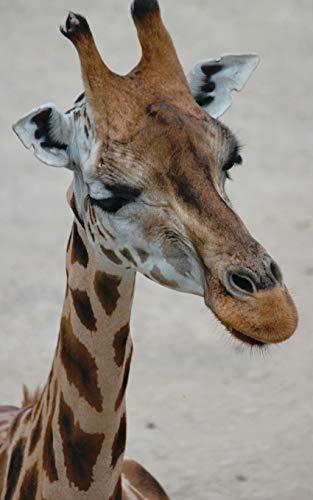 Notebook: Giraffe animal mammal head safari African Africa conservation animal rights