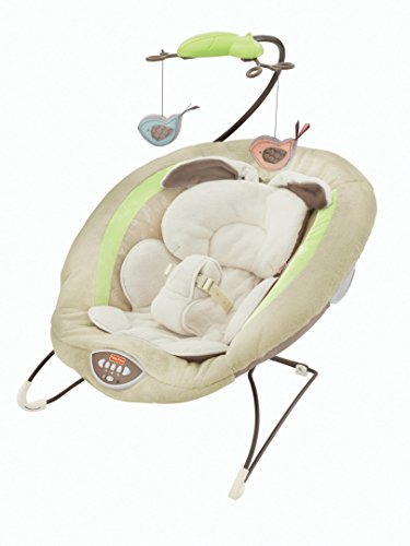 Fisher-Price Deluxe Babywippe, My Little Snugabunny