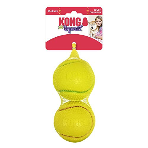 Pelotas De Tenis Grandes  marca KONG