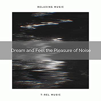 Dream and Feel the Pleasure of Noise