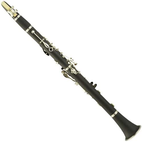 Clear clarinet for sale _image3
