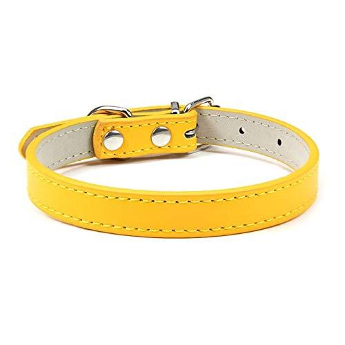DZSW Cmdzsw Collar ajustable para mascotas Collar de gato y perro Collar de cuero para mascotas (color: dorado, tamaño: 1,5 m)