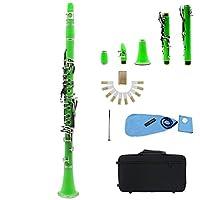 クラリネットABS 17キーBBフラットソプラノ双眼クラリネットとクリーニングクロス10葦ドライバーリードケース木管楽器 管楽器 練習用 吹奏楽器 (Color : Green)