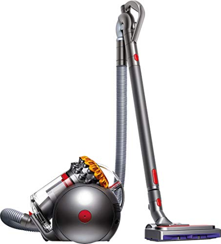 Photo de dyson-big-ball-allergy-2