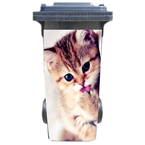 SHIRT-TO-GO Aufkleber für Mülltonne Mülltonnenaufkleber - Motiv Kitten