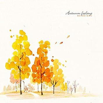 가을 느낌