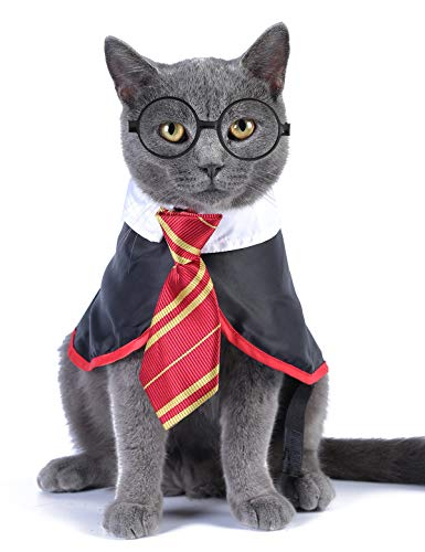 Impoosy Cat Costume Small Dog Wizard Pet Clothes Cute Apparel Puppy Shirts with Glasses (Medium)
