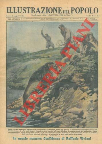 Mentre stava per cominciare lo spettacolo di un circo a Helston, in Cornovaglia, quattro leoni presero a girovagare per il parco. Il pubblico no si accorse di nulla; il domatore ritrovo' le fiere po