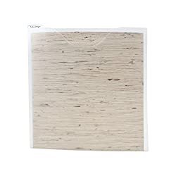 Storage Studios Paper File 3-Pack, 12.75 x 12.95 x 0.13 Inches, Clear (CH92602)