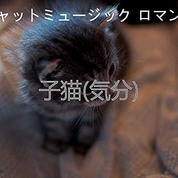 子猫(気分)