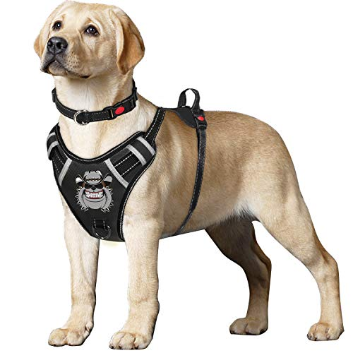 TIANYAO Dog Harness No-Pull Dog Vest Set Reflective Adjustable Oxford Material Pet Harness for Medium Large Dogs with Leash and Collar (Medium(Chest:19-25
