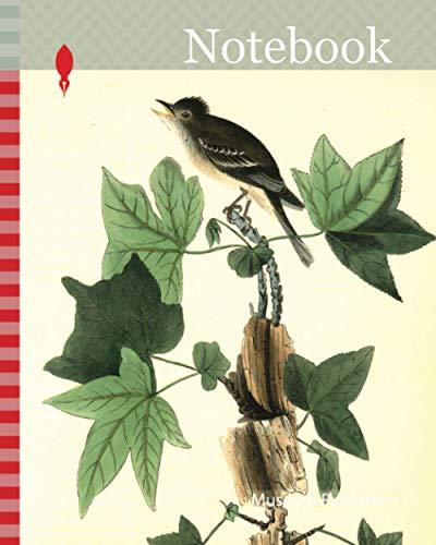Notebook: Traill's Flycatcher. Male. (Sweet Gum. Liquidambar Styraciflua.), Audubon, John James, 1785-1851