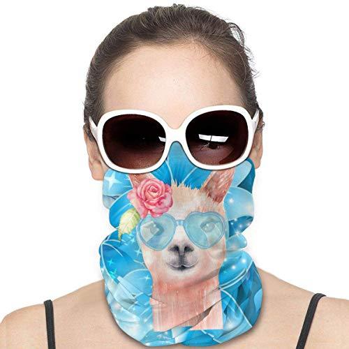 Animals With Crowns Art Mode Variety Kopftuch Nahtlose Gesichtsmaske Bandanas für Staub, Outdoor, Festivals, Sport