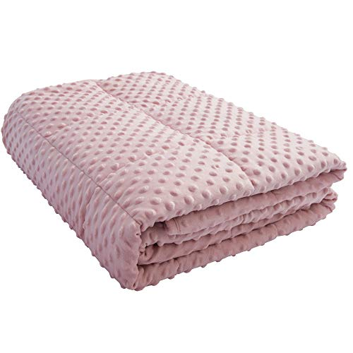 ALANSMA Reversible Weighted Blanket for All Season, Warm and Cool, Luxury Minky Velvet, Enjoy Sleeping Anywhere