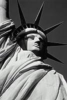 ERZAN1000ピース木製パズル自由の女神ニューヨーク市の極端なクローズアップ大人パズル のすべ