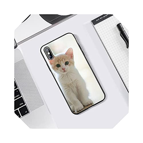 Lovely Animal Cat Phone Case Tempered Glass for iPhone 5C 6 6S 7 8 Plus X XS XR 11 Pro MAX-A8-for IPhone 11