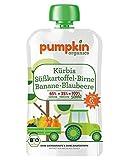 Pumpkin Organics SONNIG | Bio Gemüse-Quetschie aus Kürbis, Süßkartoffel, Birne, Banane und Blaubeere (8 x 100g) I Babynahrung ab dem 6. Monat