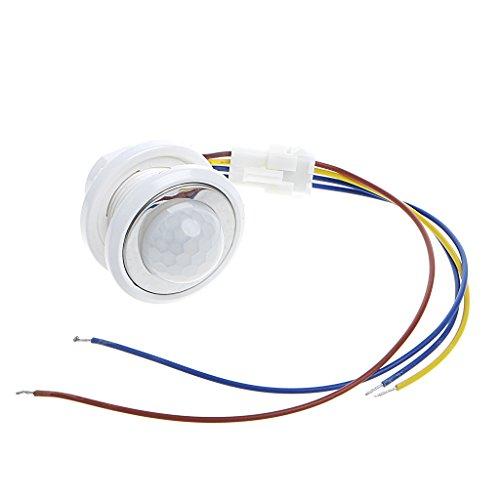 Wenyounge Interruptor de Sensor de Movimiento infrarrojo con Detector PIR LED de 40 mm con retardo de Tiempo Ajustable