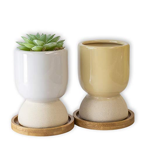GRÜNBLISS Small Succulent Pots with Drainage - 3' Cute Plant Pots with Bamboo Tray - Ceramic Planters for Your Live Succulents, Cactus, Bonsai Tree - Plant Accessories Indoor & Outdoor - Pot Set of 2