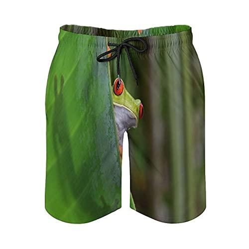 QUEMIN Strand-Shorts mit Kordelzug für Herren, Rote Augen Laubfrosch Grüne Blätter in Regenwald-Badehose Schnelltrocknendes Futter mit Taschen, M.