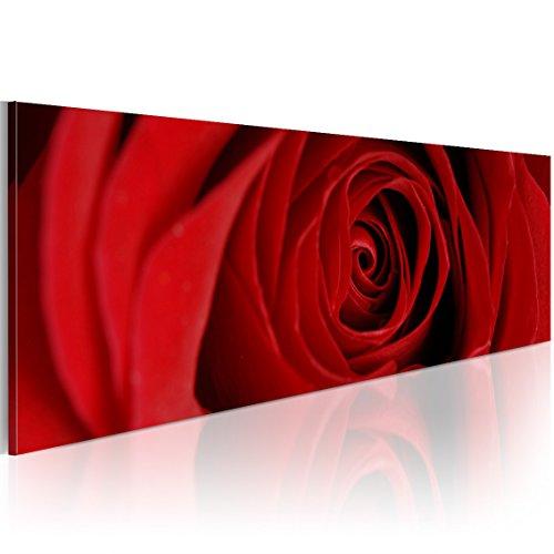murando - Bilder Blumen Rose 150x50 cm Vlies Leinwandbild 1 TLG Kunstdruck modern Wandbilder XXL Wanddekoration Design Wand Bild - Liebe rot 9060125