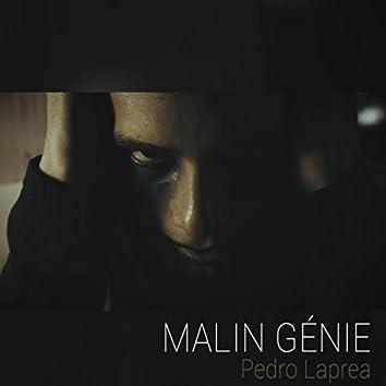 Malin Génie