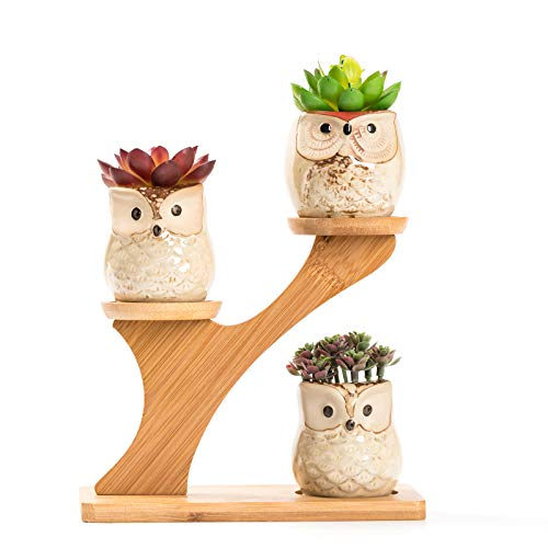 Hand-blown Tabletop Glass Owl Vase