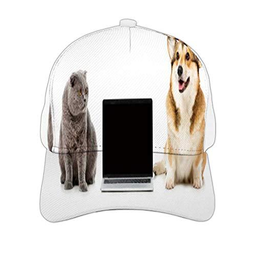 Studio Shot of Grey British Shorthair cat and Welsh Corgi Poke Sitting Near Laptop with Blank sr