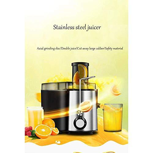 WZB Big Mouth Juice Extractor Elektrische Entsafter, 250 Watt, leiser Motor & Kaltpresse Entsafter mit Pinsel, Saftrezepte für Gemüse und Obst