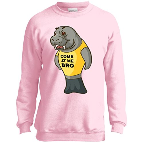 Manatee Come at Me Bro Commercial Novelty Sweatshirt for Men Women Boys Girls (Pink, Kids 14-16/Youth L)