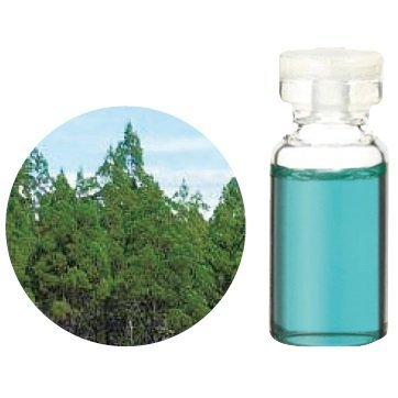 Aroma Japan Import Tree of Life Herbal Life Essential Oil 3ml - Blue Cypress (Harajuku Culture Pack)