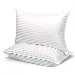 Top 10 Flat Pillows