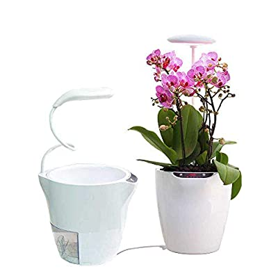 Smart Self Watering Flower Pot with Led Lamp, I...