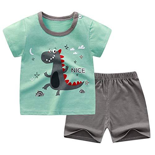 iiniim Baby Jungen Mädchen Kleidung Set Sommer Cartoon Tier Druck T-Shirt Tops mit Shorts Kurze Hosen Baby Pyjamas Freizeitkleidung Jogginganzug Grau Dinosaurier 98-104