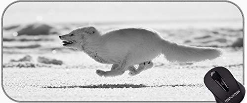 Juego extendido Mapa / Almohadilla - Grande, Vida Silvestre Arctic Fox Mouse Pads