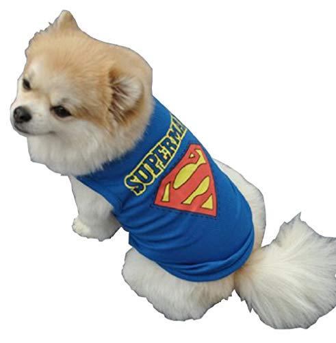 Inception Pro Infinite - Superman Kostüm - Superheld - Stahlhund - xs - Geschenkidee für Weihnachten und Geburtstag - Hund