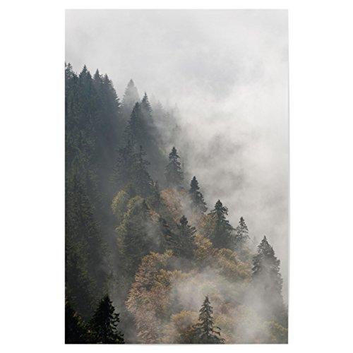 artboxONE Poster 30x20 cm Natur 'Nebelwald' hochwertiger Design Kunstdruck - Bild Natur von Michael...
