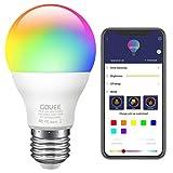 Govee LED RGB Lampe