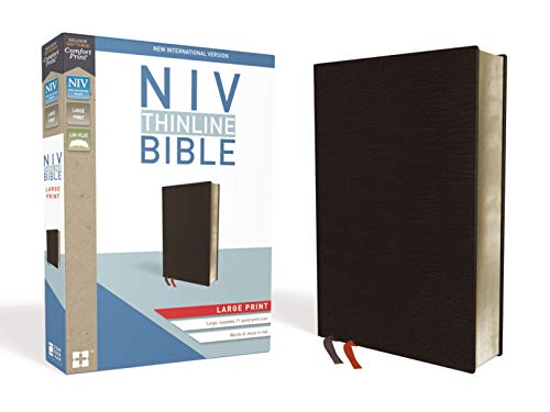 Compare Textbook Prices for NIV, Thinline Bible, Large Print, Bonded Leather, Black, Red Letter, Comfort Print Large type / Large print Edition ISBN 0025986448325 by Zondervan
