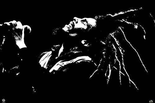 Bob Marley Portrait Singing Black White Photo Cool Wall Decor Art Print Poster 36x24