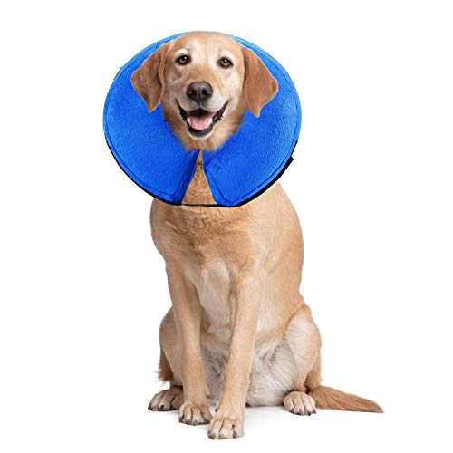 PET SPPTIES Salud Hinchable de Mascota Perro Collares Evitar Mascotas picaduras de y arañazos en Lesiones, hileras, heridas, y erupciones PS005