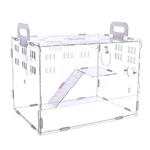 POBO ハムスターケージ ハムスターハウス 階段付き 持ち手付き 通気用の穴いっぱい 透明度有り アクリル製 M
