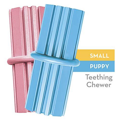 KONG - Puppy Teething Stick™ - Mordedor limpiar