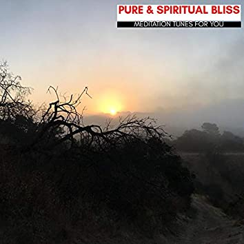 Pure & Spiritual Bliss - Meditation Tunes For You
