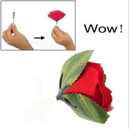 Torch to Rose Feuer-Fackel zu Rose Zaubertrick Verwandlung Zaubern Lernen aus Feuer