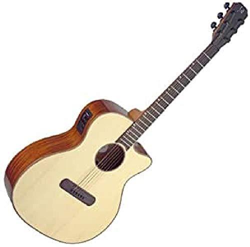 James Neligan LIS-ACFI Guitarra Electro acústica