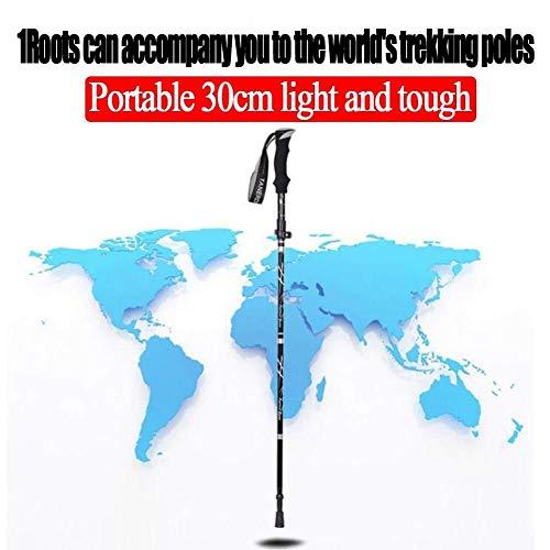 CS-DSZ Bâtons de Trekking en Fibre et Aluminium Pliable, télescopique, Pliable, Ultra léger pour extérieur, randonnée, Camping LINABIND, Noir, 95-110 cm