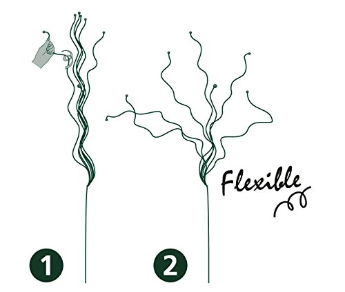 Peacock Twiggy Flexible Plant Support for Plant/Bushes/Shrubs/Small Trees