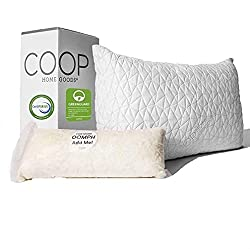 Is MyPillow worth it? No, but this Coop Home Goods Pillow is.